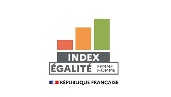 Index Egalité Profesionnelle Ostrum